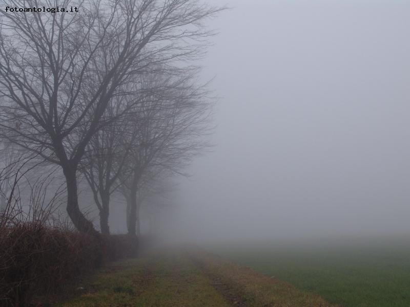 La malinconica poesia della nebbia