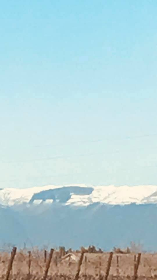 "Lo hai mai visto l'""ippopotamo"" sul Monte Cesen?"